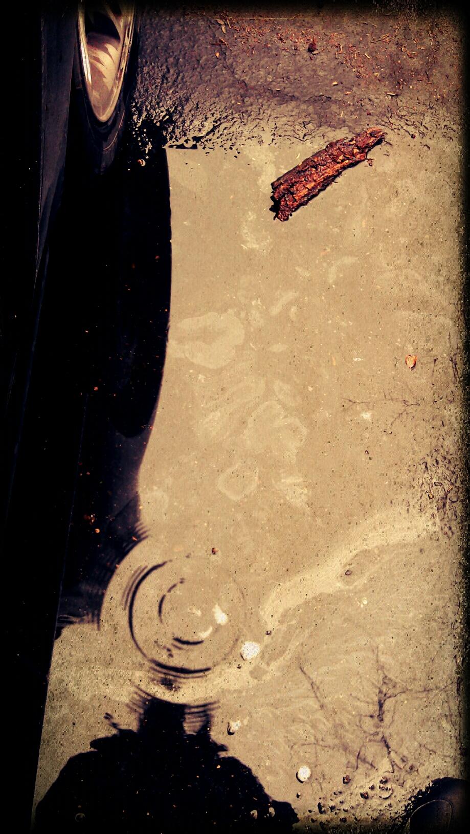 piscine la roche sur yon photo H14UgS5